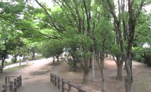平野紫耀 映画ういらぶ。ロケ地東山公園